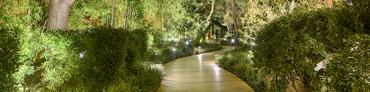 Landscape up accent lights aloadofball Image collections